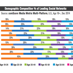 demographic composition social media platforms